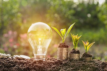 Glödlampa och gröna växter.